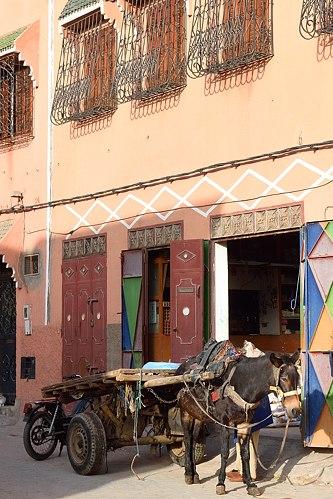 Mule and cart in Marrakech Medina