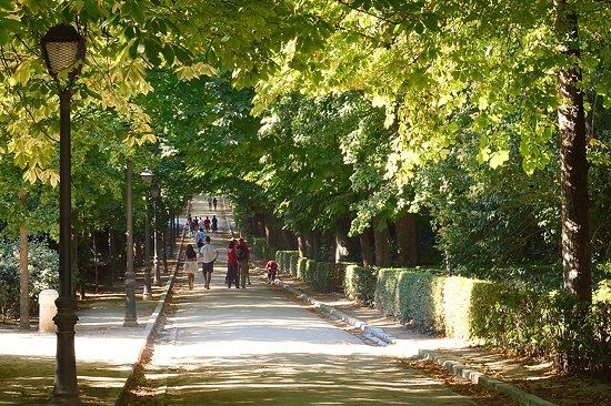 In Retiro Park